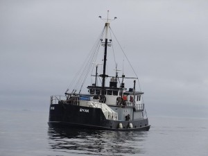 Before sinking in 2015, the F/V Eyak had been working steadily for 71 years. (Photo courtesy of Dave Castle)